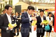 """Le """"made in Vietnam"""" à l'honneur d'une exposition au Japon"""