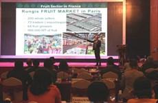 Le Vietnam lance un appel aux investisseurs français pour 57 projets