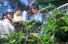 La foire de l'agriculture verte attire plus de 12.000 visiteurs