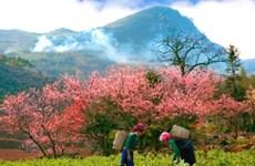 La région montagneuse du Viêt Bac: Connexion pour promouvoir le patrimoine