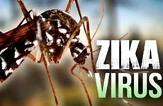 Zika: Ho Chi Minh-Ville déclare une épidémie au niveau de la commune et du quartier