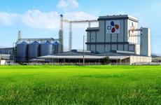 Plus de 31 millions de dollars pour la construction d'une provenderie à Ha Nam