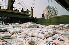 Bon signe des exportations nationales de riz vers certains marchés