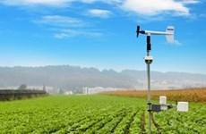 Des stations météo Imetos au service de l'agriculture