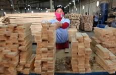 """Le """"bois légal"""" du Vietnam peut rentrer sur le marché européen"""