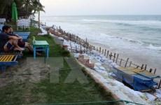 Quang Nam lance un projet pour sauver la côte de Hôi An de l'érosion