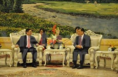 Vietnam et Chine devraient continuer à réaliser les conceptions communes