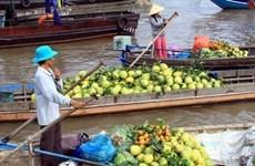 Le festival international du delta du Mékong donne rendez-vous en mars prochain
