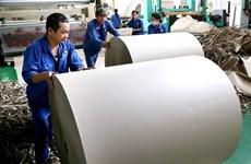Chômeurs à 35 ans : la tragédie paradoxale des ouvriers vietnamiens