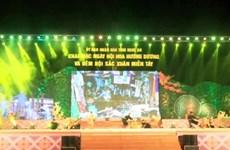 Ouverture du Festival du tournesol de Nghê An