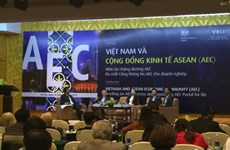 Après un an, quel bilan pour la communauté économique de l'ASEAN ?