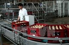 Les entreprises de bière étrangères renforcent leurs investissements au Vietnam