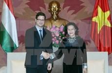 Promotion de la coopération législative Vietnam-Hongrie