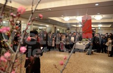 Les Vietnamiens à l'étranger accueillent le Nouvel An lunaire