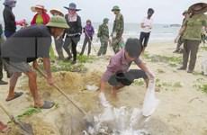 Protéger l'environnement est investir dans le développement durable