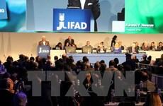 Le Vietnam à la conférence annuelle du conseil administratif de l'IFAD