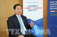 Le Vietnam contribue activement aux questions communes de l'APEC