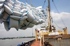 Le Vietnam devrait exporter plus de 5 millions de tonnes de riz en 2017