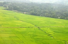 Muong Lò - berceau de la culture des Thai noirs