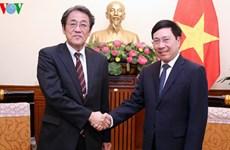 Le vice-Premier ministre Pham Binh Minh reçoit l'ambassadeur du Japon