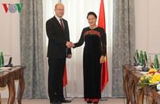 Créer une percée dans les relations commerciales Vietnam-R. tchèque