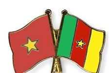 Le Vietnam promeut son partenariat avec le Cameroun