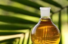 L'Indonésie appelle l'ASEAN à protester contre la limite de consommation de l'huile de palme