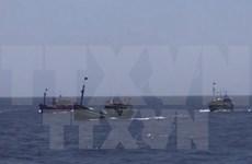 Pêche : l'annonce chinoise concernant les eaux vietnamiennes est dépourvue de toute valeur
