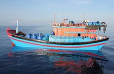 Le Vietnam vérifie l'information de l'arrestation de pêcheurs vietnamiens par la Malaisie