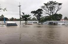 Les Vietnamiens en Thaïlande s'entraident pour surmonter les conséquences de la tempête Sonca