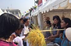 Activités culturelles et sportives en l'honneur du cinquantenaire de l'ASEAN