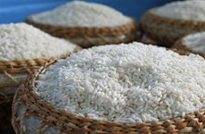 1er semestre : plus de 660.000 tonnes de riz parfumé exportées
