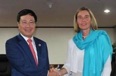 Promotion de la coopération entre le Vietnam et d'autres pays