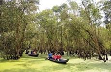 Les destinations attrayantes de la province d'An Giang