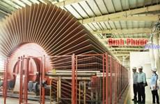 Binh Phuoc: mise en service de la plus grande usine de panneaux MDF d'Asie