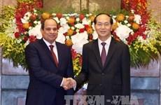 Entretien entre les présidents vietnamien et égyptien