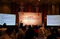 Quelles perspectives énergétiques pour le Vietnam ?