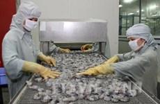 L'UE, premier marché pour les crevettes vietnamiennes