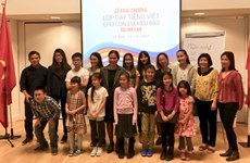Pays-Bas: Premier cours de langue vietnamienne en faveur des enfants de Viêt kiêu