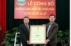 Dà Lat : Enregistrement de la marque de certification pour le café arabica du village de Câu Dât