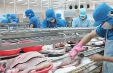 Forte croissance des exportations de pangasius en Chine