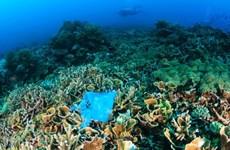 L'ASEAN discute de la gestion des plastiques océaniques