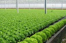 Le Forum international sur l'agriculture bio attire 400 délégués étrangers