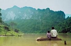 2017 : une année pleine pour le cinéma vietnamien