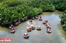 Cam Thanh, le pays des palmiers Nypa