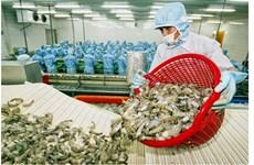 L'UE devient le premier importateur de crevettes vietnamiennes