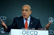 Le Vietnam à la conférence ministérielle de l'OECD sur les PME