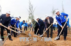 Lancement du Mois des jeunes et la fête de plantation d'arbres 2018