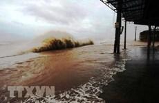 Le Comité des typhons contribue au développement durable
