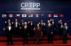 Le CPTPP stimulera la coopération économique et commerciale Vietnam-Chili